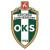 Okocimski_Brzesko_herb2